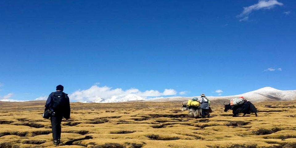 Short Trekking Near Lhasa City