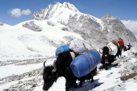 Mount Cho Oyu North Expedition
