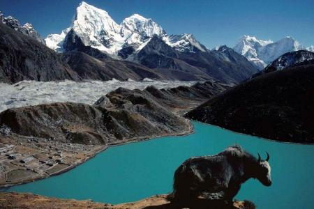 Everest BC Gokyo Lake Trek