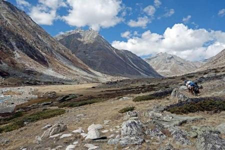 Upper Humla Circuit Trek